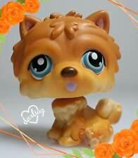 Littlest Pet Shop Chow Chow # 117 Teal eyes White Dot 2005