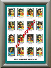 HAITI - WORLD CUP 74 - REPRO STICKERS A3 POSTER PRINT