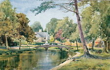 BOURTON-IN-THE-WATER (Glos): River Windrush-SYLVESTER STANNARD-SALMON