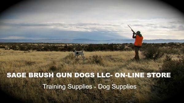 Sage Brush Gun Dogs LLC