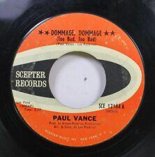 Rock 45 Paul Vance - Dommage, Dommage / Sexy Auf Zepter