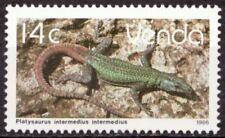 Venda 1986 Mi 137 Reptielen, Reptiles MNH