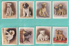 Godfrey Phillips: Our Puppies (1936) Full set 30. Excellent.