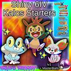 ✨SHINY✨ 6IV Fennekin Chespin Froakie HA / Pokemon XY ORAS Ultra Sun & Moon 3DS