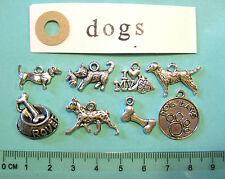 8 Tibetan Silver Dog Charms Labrador Bassotto dalmation OSSO DOG CIOTOLA DOG TAG