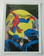 Rare 1970's Original Marvel Comics Amazing Spider-Man 70 cover art poster:Romita