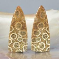Natural Agatized Fossil Coral Cabochon Pair for Earrings Indonesia 5.39 g