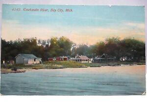 """1912 KNOX CO POSTCARD  """"  KAWKAWLIN RIVER, BAY CITY MICH """" HOMES AT SHORE"""