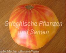 Hillbilly Tomate * gelb/rot marmorierte Fleisch-Tomaten 10 frische Samen Balkon