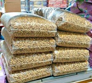 MONKEY NUTS / PEANUTS IN SHELLS : Bucktons Wild Bird Feed Squirrels bp Parrot vf
