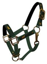 GREEN PONY Size Nylon Halter With Running Horse Overlay Print! NEW HORSE TACK!