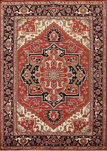 Geometric Hand-Made Indo Heriz Serapi Oriental Area Rug Living Room 8x10 Carpet