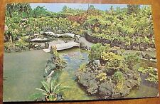 1960's Kong's Floraleigh Orchid Gardens Hilo Hawaii