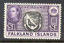 FALKLAND ISLANDS £1 One Pound MNH SG 163 Cat. £130
