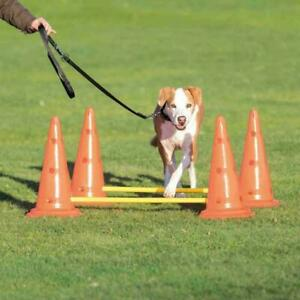 Trixie Dog Activity Obstacle Training Course Set with 4 Cones/Pylons & 2 Poles