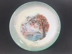 "Souvenir Olney Illinois Plate 8 1/2"" Farm Autumn Wellsville Ohio Pottery Antique"