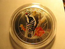 CANADA 2008 DOWNY WOODPECKER COLOURED OVERSIZE 25 CENT COIN BIRD SERIES