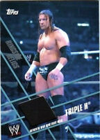 WWE Triple H Topps 2011 Ringside Relics Event Used Ring Skirt Relic Card Black