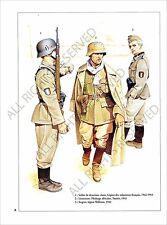 PLANCHE UNIFORMS PRINT WWII VOLONTAIRES ETRANGERS FOREIGN VOLUNTEERS Wehrmacht