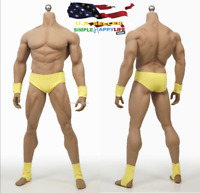 1//6 PHICEN Female Muscle Seamless body S22A Pale M bust Steel❶USA IN STOCK❶