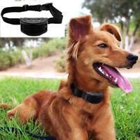 Collar Antiladridos Descarga Eléctrica Adiestramiento para Perro Pequeño Mediano