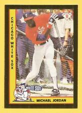 MICHAEL JORDAN 1991 American Sports Monthly Gold Foil Promo #44 White Sox