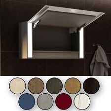 Armoire pour Salle de Bain avec Miroir et Éclairage LED · 1-Porte · 100x72x21cm