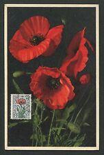 BELGIEN MK 1950 FLORA FEUERMOHN MAXIMUMKARTE CARTE MAXIMUM CARD MC CM d4643