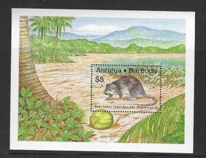 Antigua & Barbuda 1989 UMM Local Fauna MS 1326