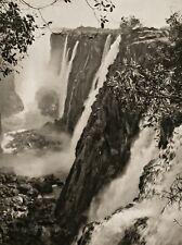 1929 Original AFRICA Victoria Falls Jungle Landscape Photo Gravure Art 11X14