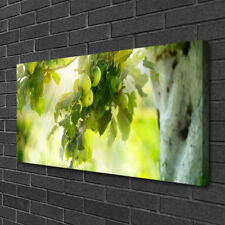 Canvas print Wall art on 100x50 Image Picture Branch Of Apples Kitchen
