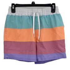 """Chubbies Mens Swim Trunks The Flavor Savors 5.5"""" Mesh Lined Striped Stretch S"""
