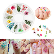 12 Color/Roll Real Dry Dried Flower 3D UV Gel Acrylic False Nail Art Dec DIY