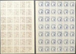 UKRAINE: c.1918 Imperf Blocks 20sh Brown & 30sh Ultramarine - Forgeries (42839)