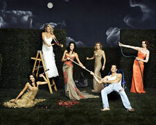 Desperate Housewives [Cast] (18573) 8x10 Photo