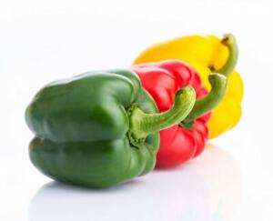 Sweet Mix Peppers 50 Seeds Bell Garden UK Bio Vegetable Organic