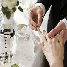 2 PCS Bride & Groom Tux Bridal Veil Wedding Party Toasting Wine Glasses Decor