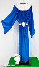 Sorceress Fairy Godmother Mystic Celestial Goddess 5pc Ladies Costume