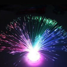 Colorful LED Fiber Optic Light Lamp Holiday Wedding Home Decoration Toy Gifts