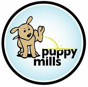 """""""PUPPY PEEING ON PUPPY MILLS"""" Circle car magnet"""
