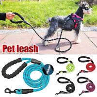 Pet Dog Leash Lead Rope Collar Night Reflective Threaded Pet Training Handle