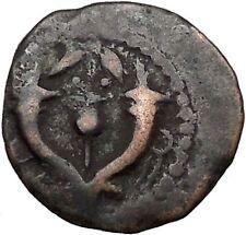WIDOW's MITE Ancient Biblical Jerusalem King Alexander Yehonatan Coin  i36727