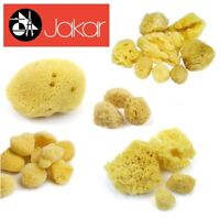 Jakar Natural Sea Sponge Fine & Course Texture Artist Synthetic Watercolour New