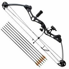 vidaXL Arc à poulies pour adulte avec accessoires et flèches en fibre de verre