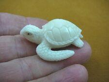 (tb-turt-22) Sea Turtle TAGUA NUT palm figurine Bali carving coral reef turtles