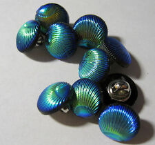 10 x Oyster Shell Shape BLUE AB iridescent Shank Back Buttons 12mm Wide (FB3E)