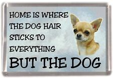 "Chihuahua (Smoothcoat) Fridge Magnet ""Home is Where"" Design No 2 by Starprint"