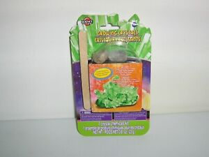 Crystal Growing Kit - Green -  by Science By Me