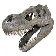 More details for resin replica t-rex skull 39.5cm