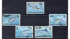 Islas Virgenes Fauna Marina Peces año 1996 (DN-700)
